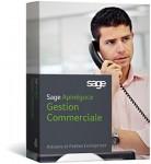 Sage Apinégoce Gestion Commerciale i7